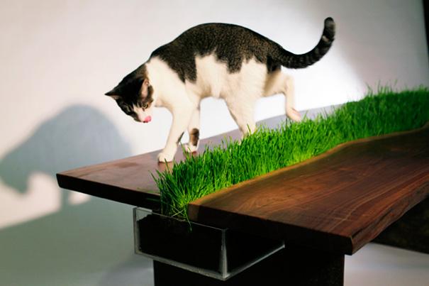 21 Creative Furniture Design Ideas For Pets Demilked