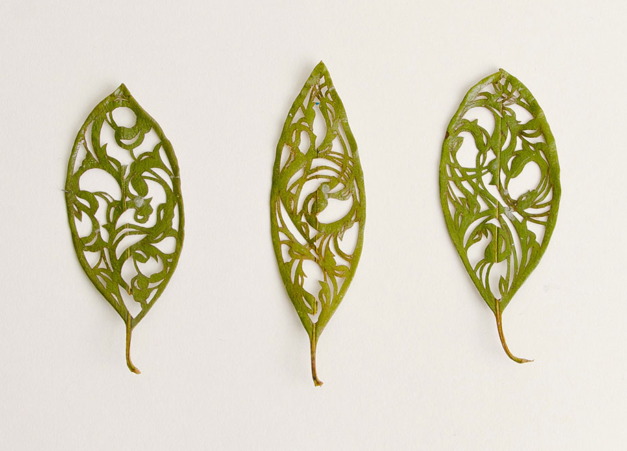 embroidery-art-stitched-leaves-hillary-fayle-12