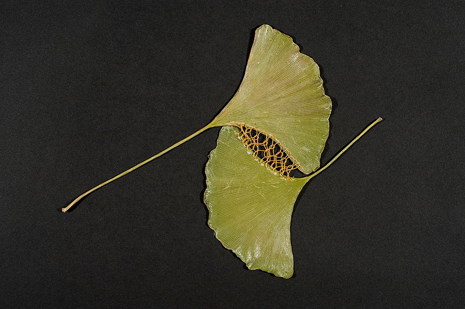 embroidery-art-stitched-leaves-hillary-fayle-14