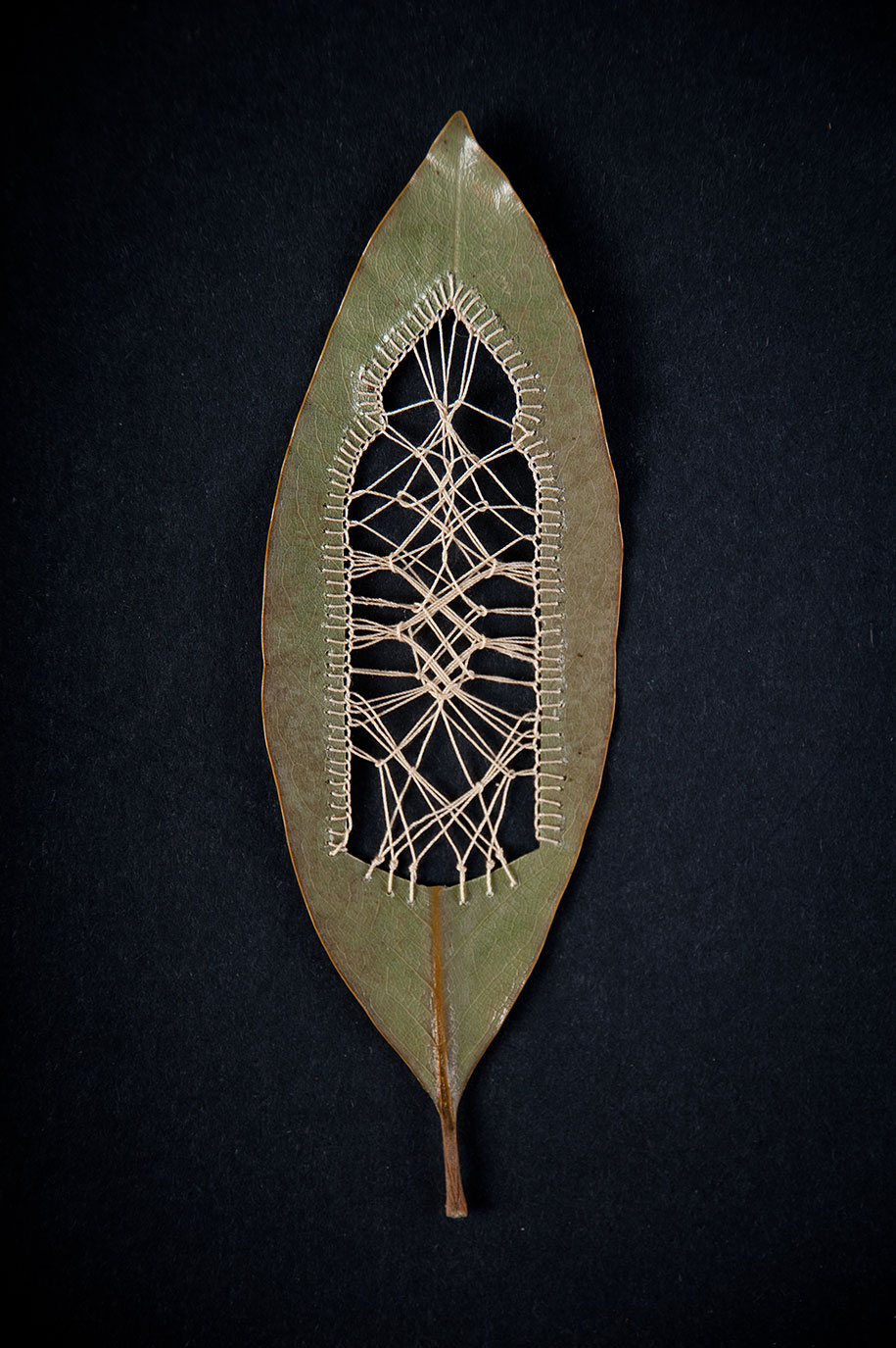 embroidery-art-stitched-leaves-hillary-fayle-3
