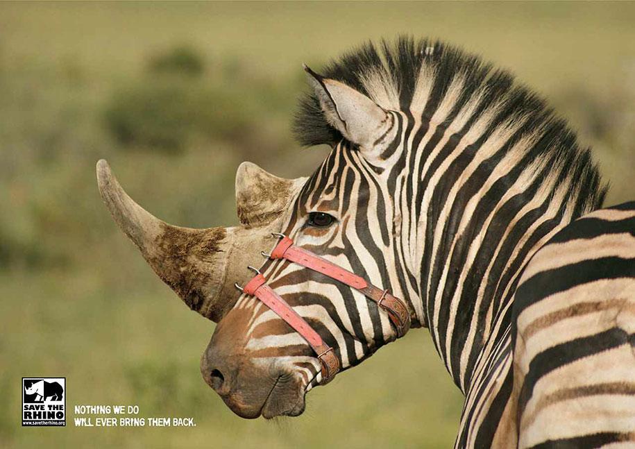 social-awareness-powerful-animal-ads-14