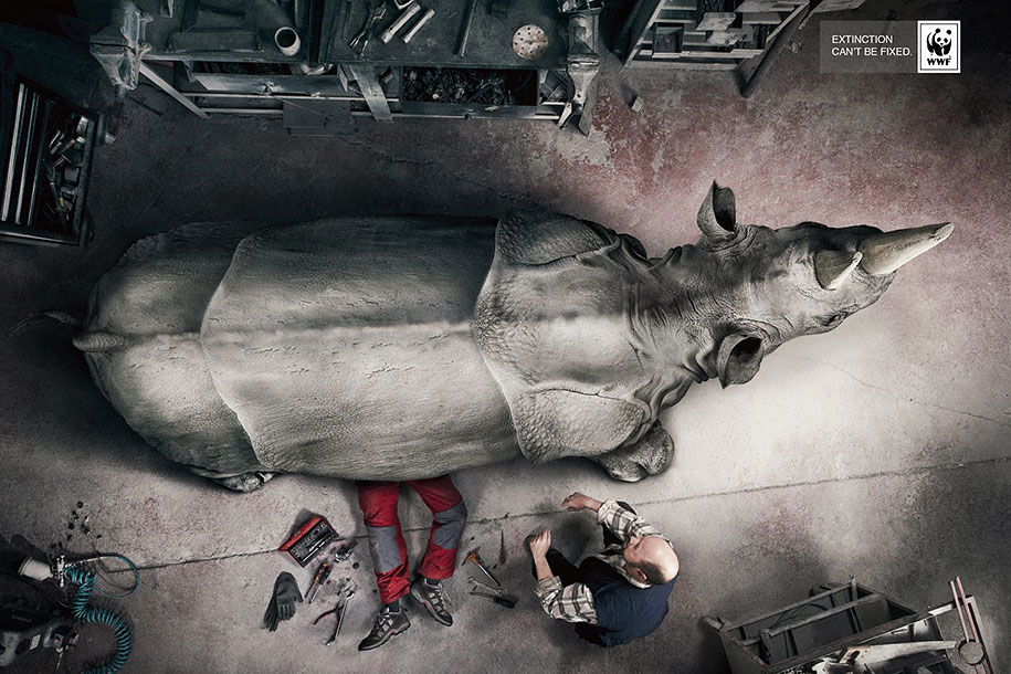 social-awareness-powerful-animal-ads-35