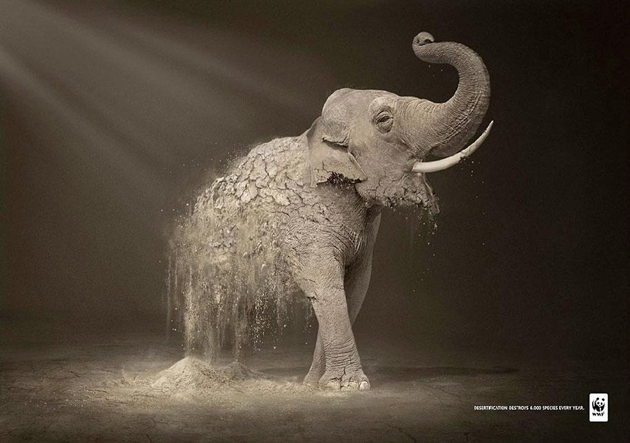 social-awareness-powerful-animal-ads-39