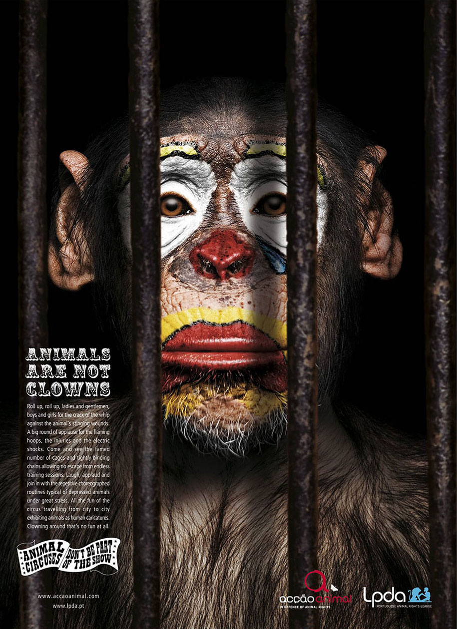 social-awareness-powerful-animal-ads-4