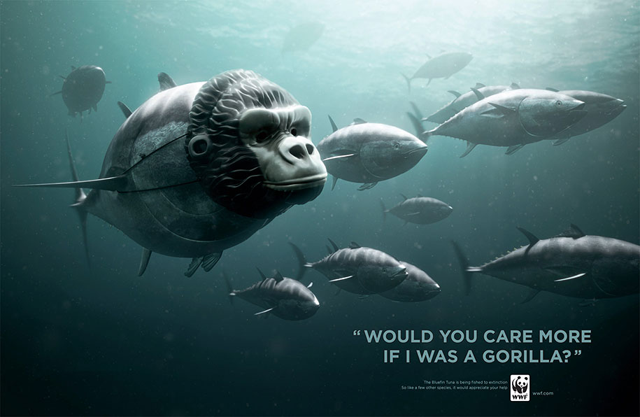 social-awareness-powerful-animal-ads-64