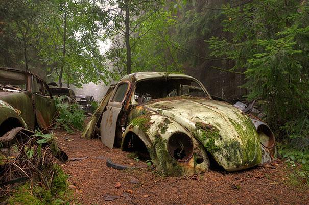 chatillon-car-graveyard-abandoned-cars-vehicle-cemetery-rosanne-de-lange-1