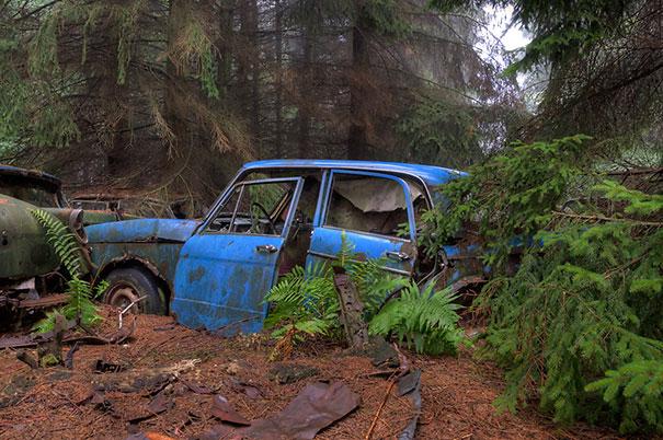 chatillon-car-graveyard-abandoned-cars-vehicle-cemetery-rosanne-de-lange-5