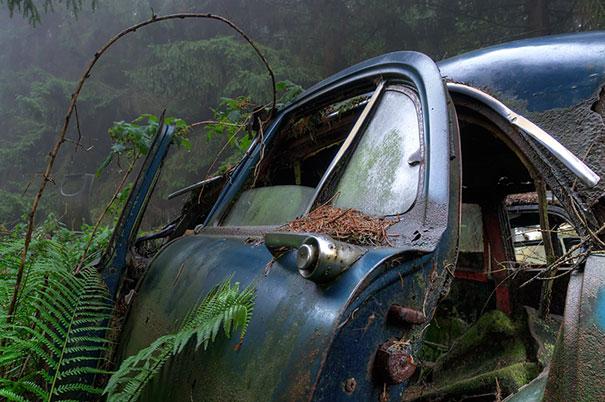 chatillon-car-graveyard-abandoned-cars-vehicle-cemetery-rosanne-de-lange-6