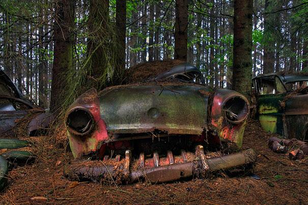 chatillon-car-graveyard-abandoned-cars-vehicle-cemetery-rosanne-de-lange-7