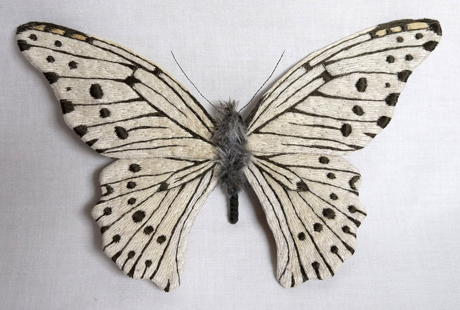 textile-art-fabric-sculptures-insects-moths-butterflies-yumi-okita-11