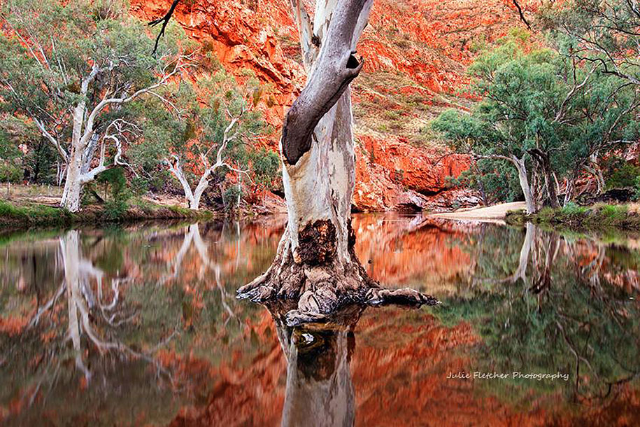 wild-nature-landscape-photography-australia-julie-fletcher-9