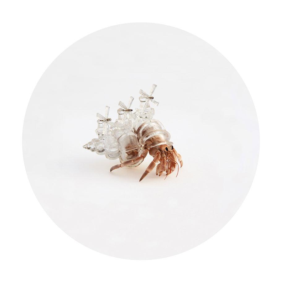 3d-printed-hermit-crab-shells-aki-inomata-1