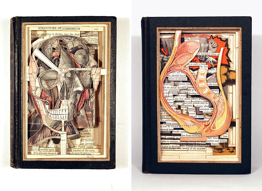 book-surgeon-carvings-art-brian-dettmer-30