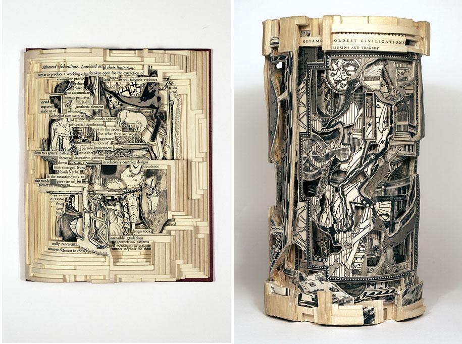 book-surgeon-carvings-art-brian-dettmer-33