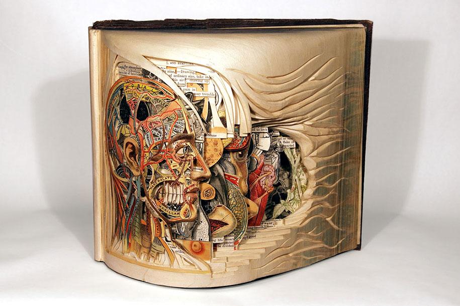 book-surgeon-carvings-art-brian-dettmer-38