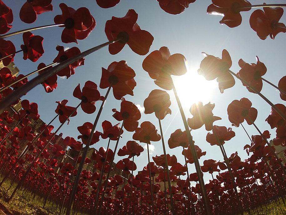 ceramic-poppies-installation-first-world-war-london-tower-10
