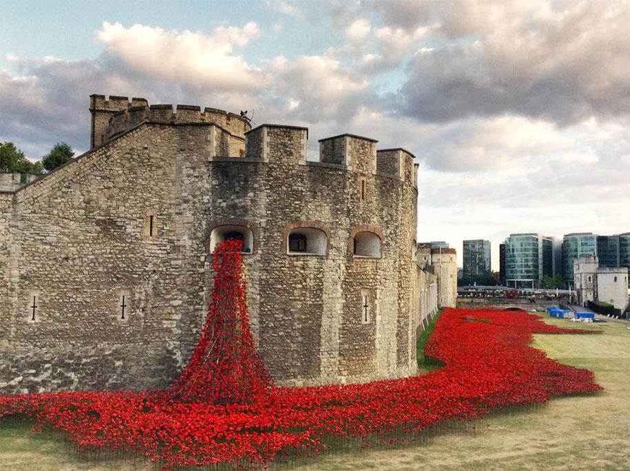 ceramic-poppies-installation-first-world-war-london-tower-12