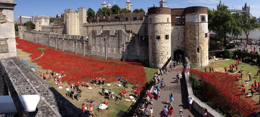 ceramic-poppies-installation-first-world-war-london-tower-13