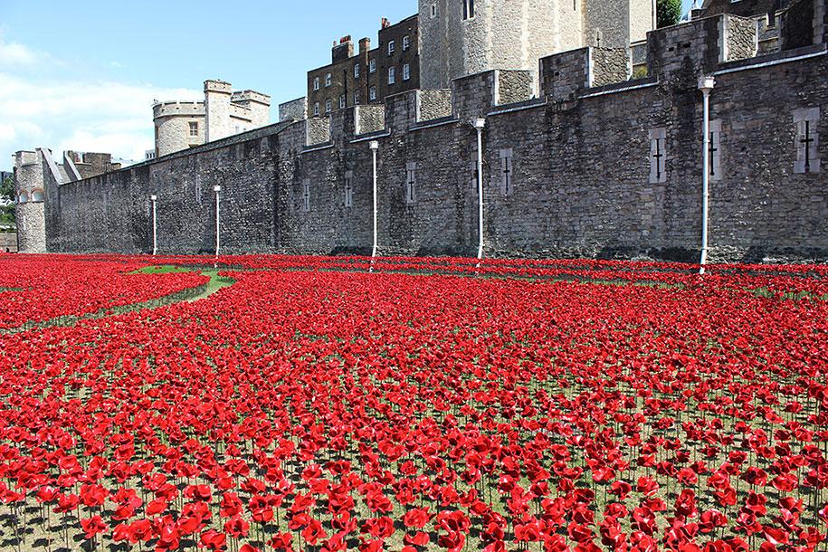 ceramic-poppies-installation-first-world-war-london-tower-2
