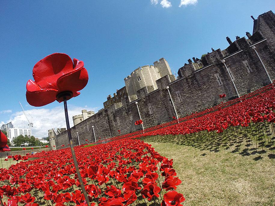 ceramic-poppies-installation-first-world-war-london-tower-3