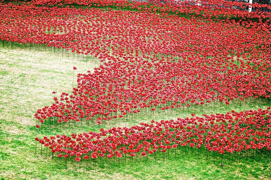 ceramic-poppies-installation-first-world-war-london-tower-5