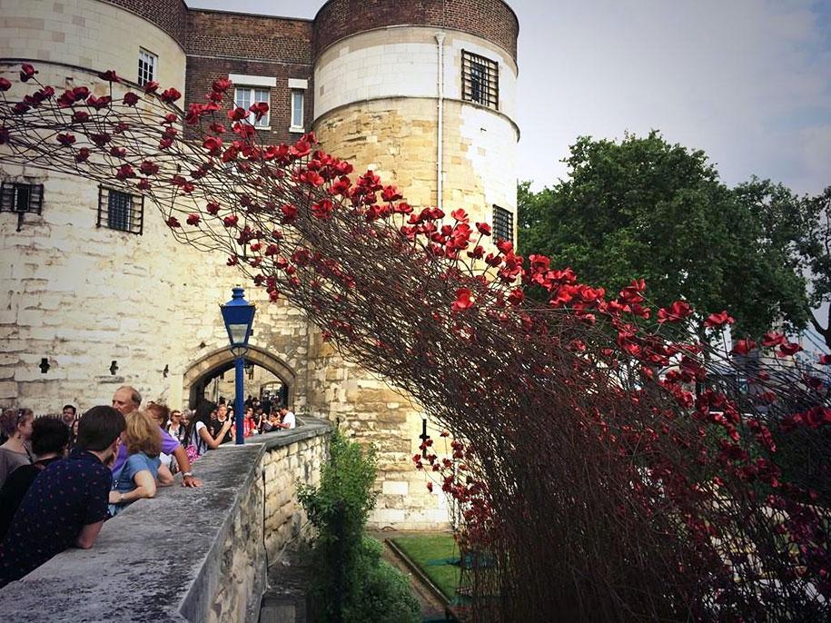 ceramic-poppies-installation-first-world-war-london-tower-7