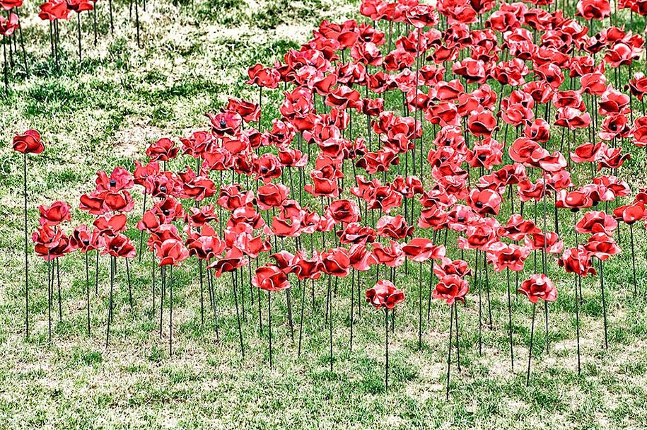 ceramic-poppies-installation-first-world-war-london-tower-9