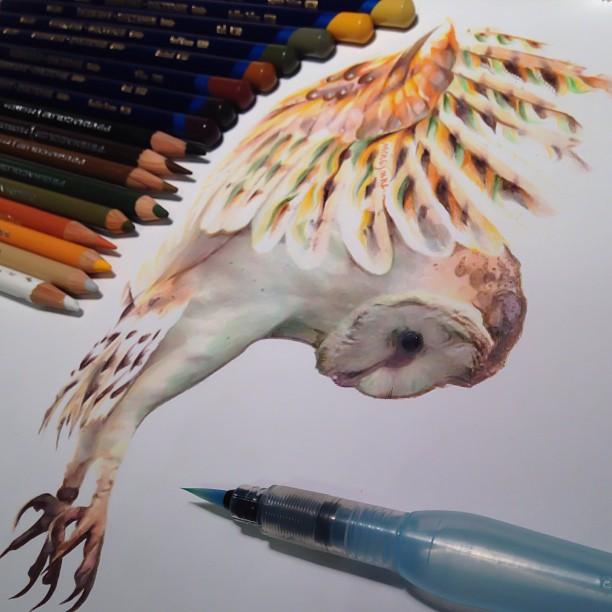 mixed-media-realistic-drawings-karla-mialynne-16