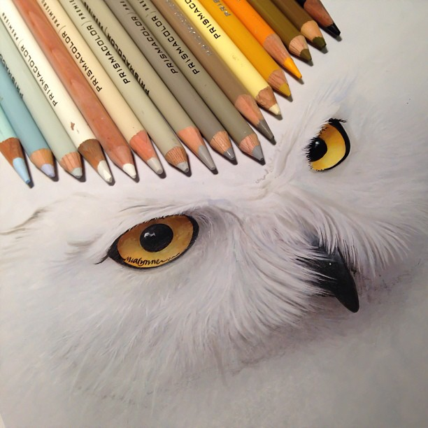 mixed-media-realistic-drawings-karla-mialynne-18