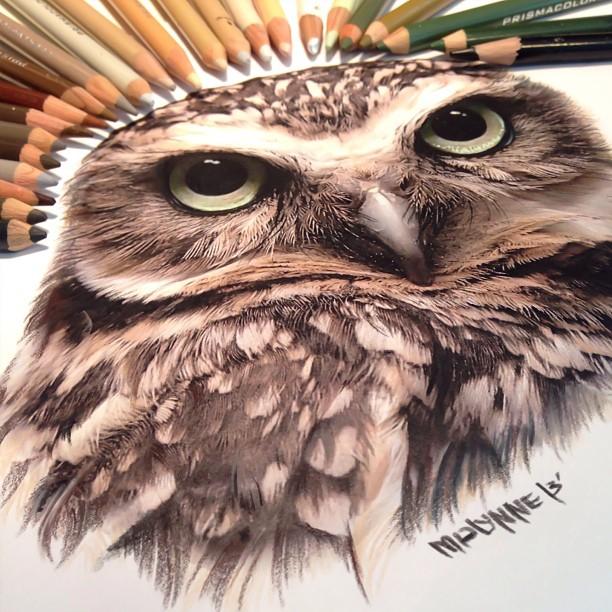 mixed-media-realistic-drawings-karla-mialynne-20