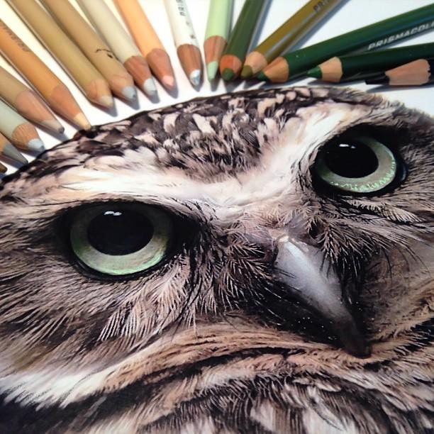 mixed-media-realistic-drawings-karla-mialynne-3