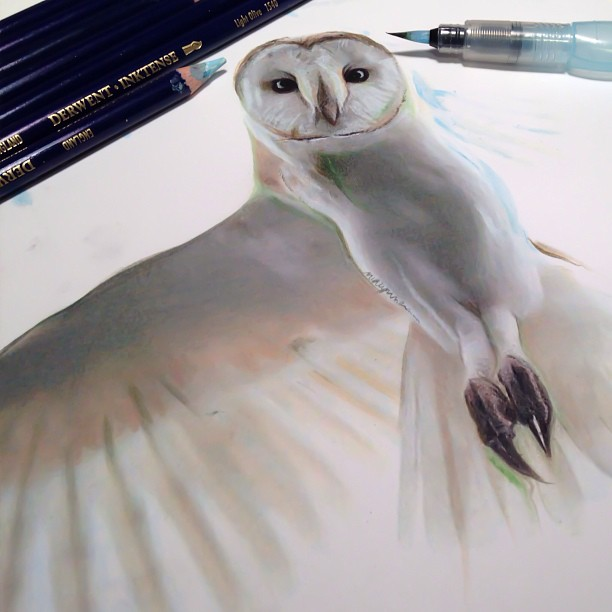 mixed-media-realistic-drawings-karla-mialynne-5
