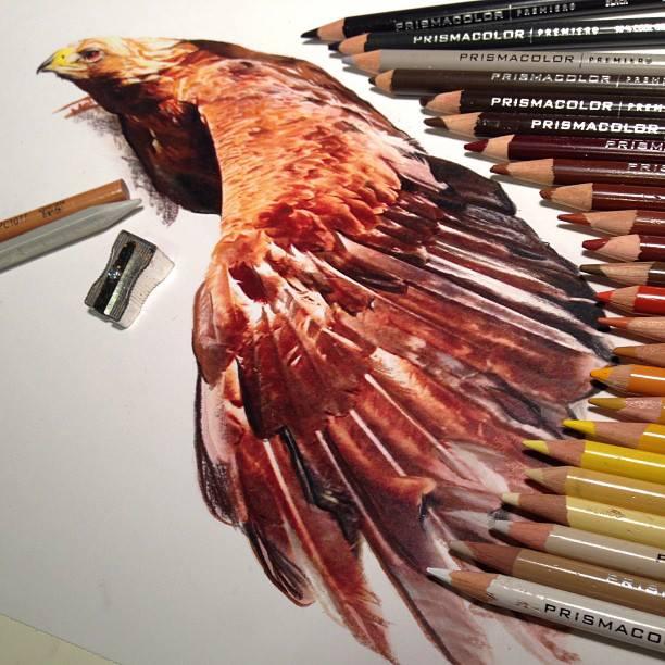 mixed-media-realistic-drawings-karla-mialynne-9