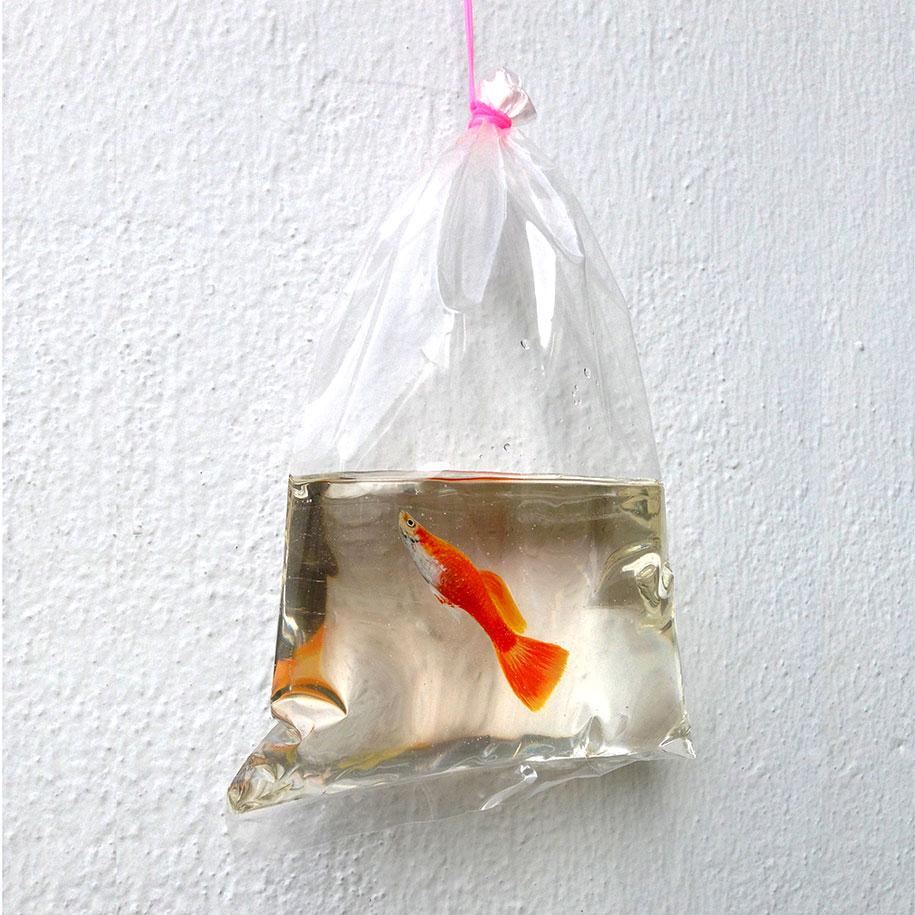 optical-illusion-3d-fish-resin-painting-keng-lye-10