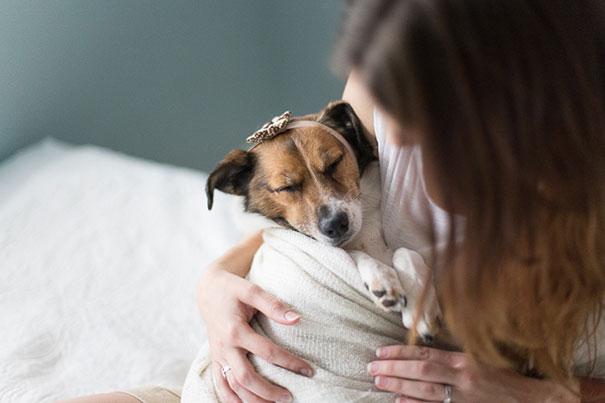 snuggles-dog-baby-photos-count-it-joy-photography-jamie-clauss-3