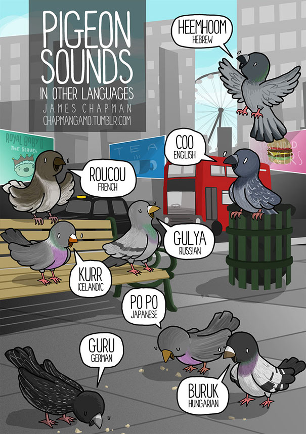 different-languages-expressions-illustrations-james-chapman-2