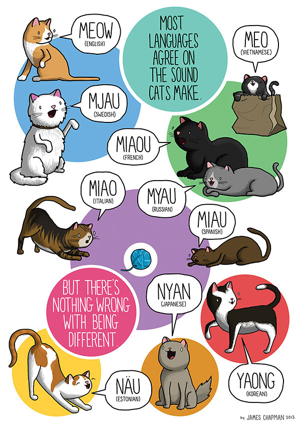 different-languages-expressions-illustrations-james-chapman-8
