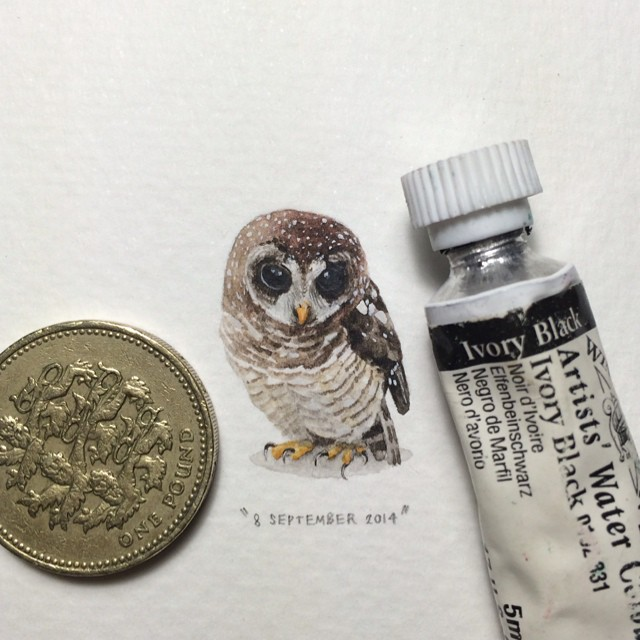 postcards-for-ants-miniature-paintings-lorraine-loots-2