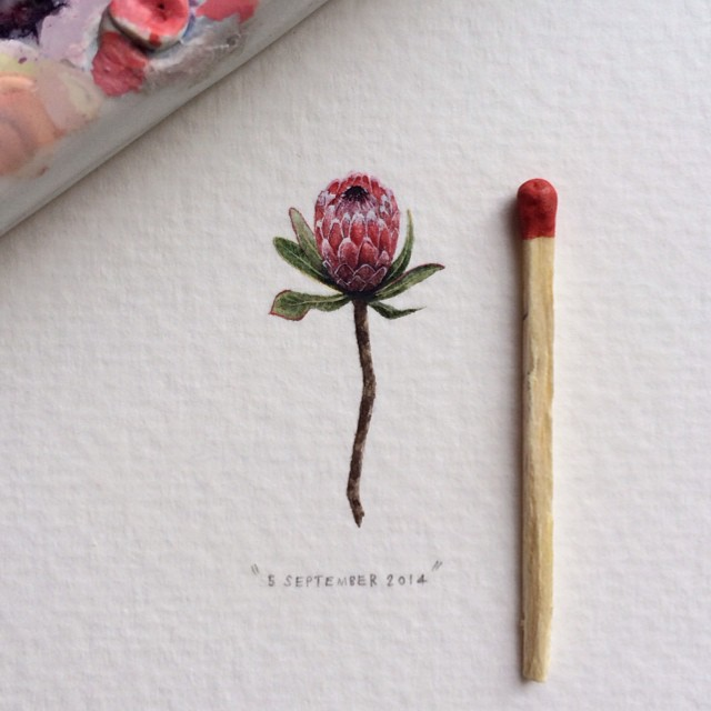 postcards-for-ants-miniature-paintings-lorraine-loots-6