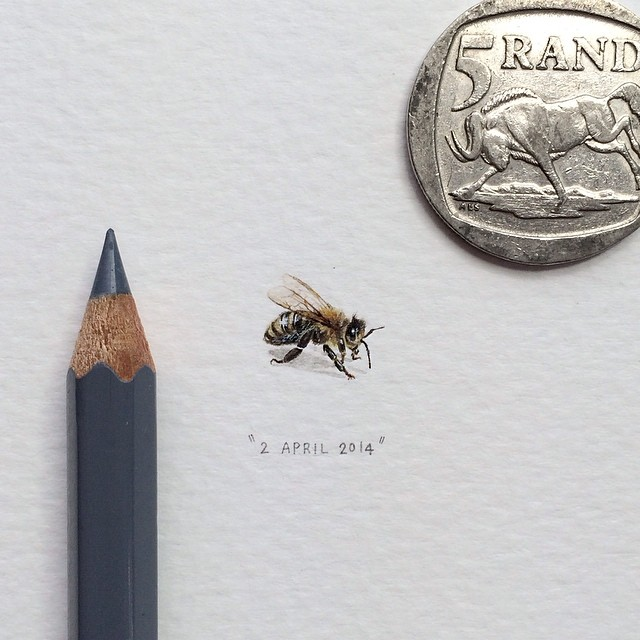 postcards-for-ants-miniature-paintings-lorraine-loots-8