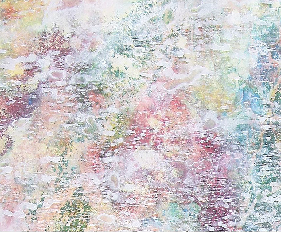 prodigy-child-painter-autism-iris-grace-12