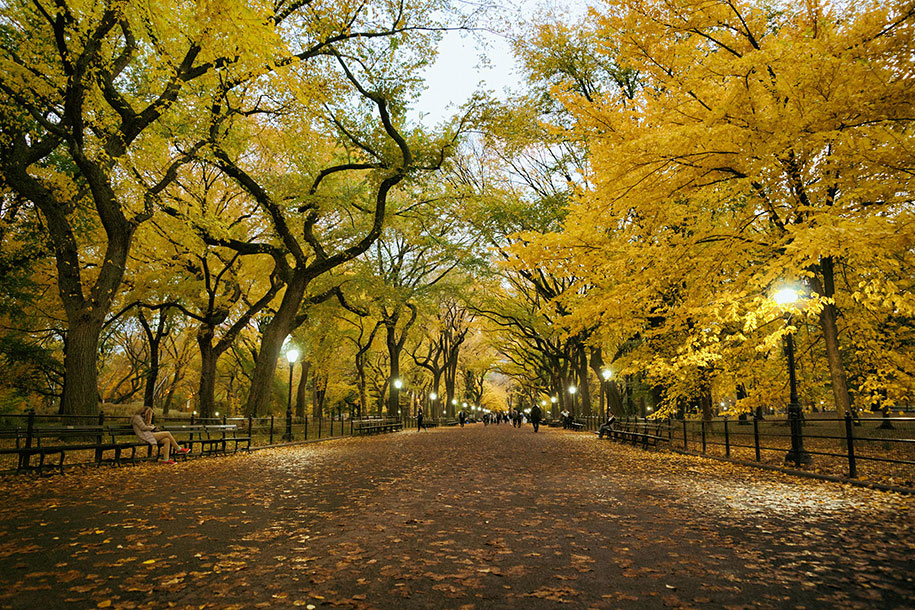 autumn-before-and-after-nature-photography-11