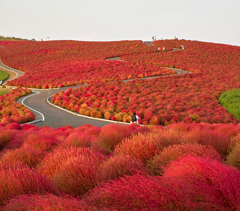 autumn-before-and-after-nature-photography-13