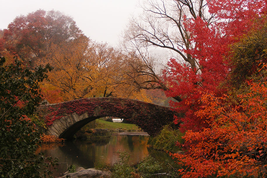 autumn-before-and-after-nature-photography-4