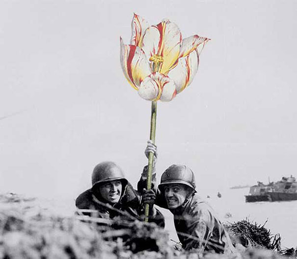guns-flowers-vintage-photos-collage-art-blick-2