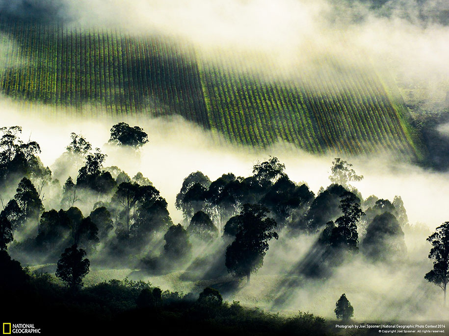 national-geographic-photo-contest-2014-entries-16