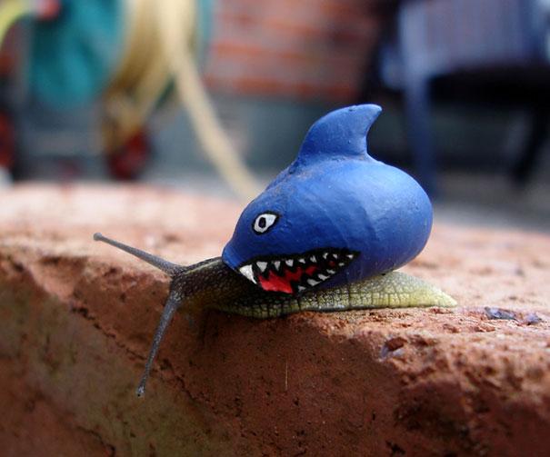 painted-snail-shell-art-14