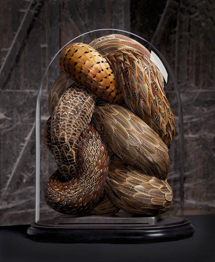 bird-feather-sculpture-art-kate-mccgwire-11