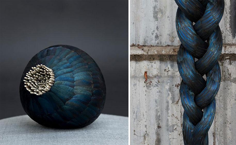 bird-feather-sculpture-art-kate-mccgwire-19