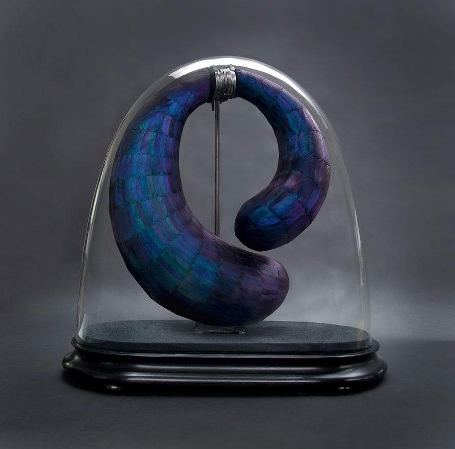 bird-feather-sculpture-art-kate-mccgwire-2